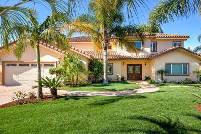 Camarillo Single Family Home For Sale: 401 West Loop Drive