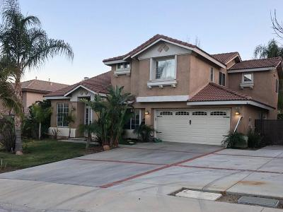 Castaic Single Family Home For Sale: 28624 Oak Valley Road