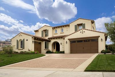 Moorpark Single Family Home For Sale: 7359 Elk Run Way