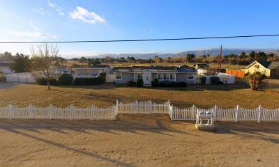 Palmdale Single Family Home For Sale: 2558 West Avenue M12
