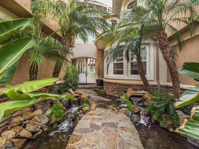 Camarillo Single Family Home For Sale: 2952 Avenida De Autlan