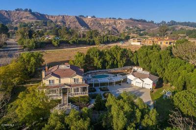 Camarillo Single Family Home For Sale: 2998 North Redondo Avenue