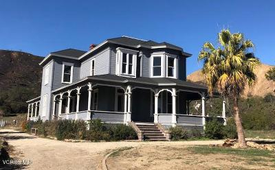 Santa Paula Single Family Home For Sale: 1226 Ojai Road