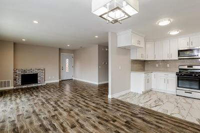 Santa Paula Single Family Home For Sale: 172 North Steckel Drive