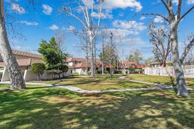 Westlake Village Condo/Townhouse For Sale: 1255 Landsburn Circle