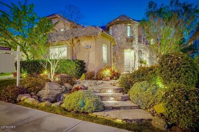 Simi Valley Single Family Home For Sale: 3984 Eagle Flight Drive