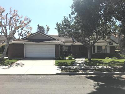 Oxnard Single Family Home For Sale: 1700 Holly Avenue