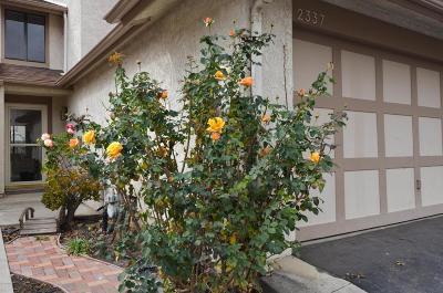 Ventura Condo/Townhouse For Sale: 2337 Pima Lane