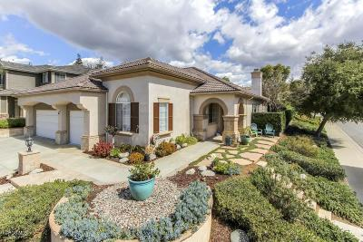 Thousand Oaks Single Family Home For Sale: 3667 Lang Ranch Parkway
