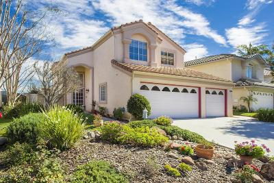 Thousand Oaks Single Family Home For Sale: 1837 Rock Spring Street