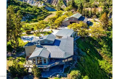 Santa Paula Single Family Home For Sale: 15900 South Mountain Road