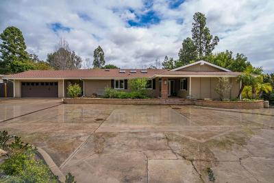 Camarillo Single Family Home For Sale: 1734 Ramona Drive