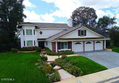 Oak Park Single Family Home For Sale: 4904 Pathfinder Avenue