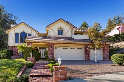 Agoura Hills Single Family Home For Sale: 6081 Lake Lindero Drive