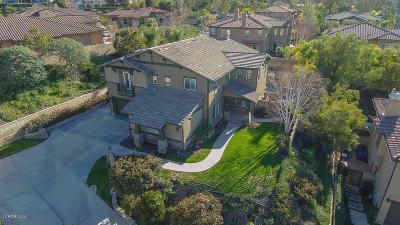 Thousand Oaks Single Family Home For Sale: 338 Blake Ridge Court
