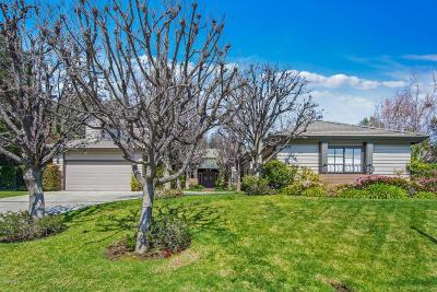 Westlake Village Single Family Home For Sale: 1724 Mesa Ridge Avenue