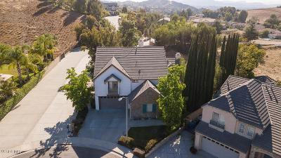 Simi Valley Single Family Home For Sale: 631 Coppertree Court