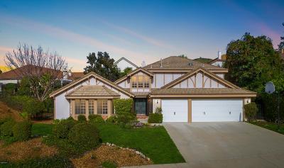 Thousand Oaks Single Family Home For Sale: 418 Hillsborough Street