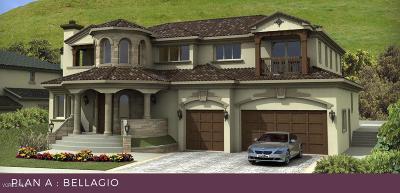 Thousand Oaks Single Family Home For Sale: 2135 Lonestar Way