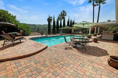 Calabasas Single Family Home For Sale: 4004 Schuylkill Drive