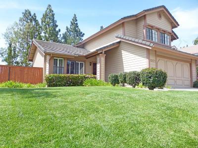 Thousand Oaks Single Family Home For Sale: 2637 Rikkard Drive