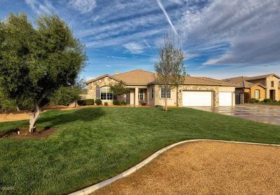 Lancaster Single Family Home For Sale: 41829 Montallegro Street