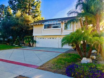 Thousand Oaks Single Family Home For Sale: 3529 North Quarzo Circle
