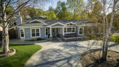 Thousand Oaks Single Family Home For Sale: 1410 Calle Violeta
