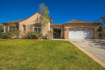 Simi Valley Single Family Home For Sale: 3234 Bluebird Circle