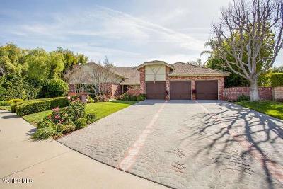 Agoura Hills Single Family Home For Sale: 6128 Braemar Court