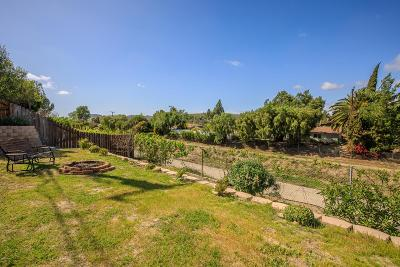 Thousand Oaks Single Family Home For Sale: 181 Tennyson Street