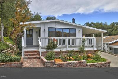 Westlake Village Single Family Home For Sale: 126 Fallen Leaf Lane
