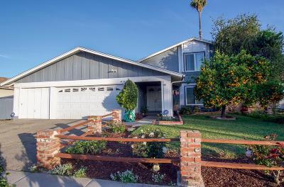 Simi Valley Single Family Home For Sale: 886 Erringer Road
