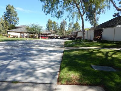 Agoura Hills Condo/Townhouse For Sale: 28709 Conejo View Drive