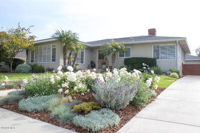 Ventura Single Family Home For Sale: 264 Dorothy Avenue