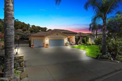Camarillo Single Family Home For Sale: 7207 Camino Las Ramblas