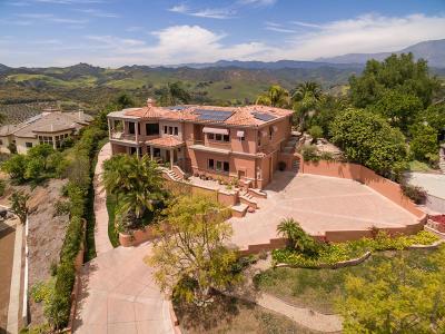 Santa Paula Single Family Home For Sale: 405 Monte Vista Drive