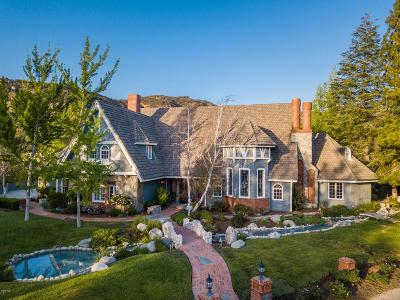Agoura Hills Single Family Home For Sale: 3910 French Court