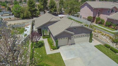 Canyon Country Single Family Home For Sale: 29637 Florabunda Road