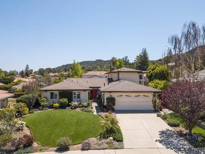 Thousand Oaks Single Family Home For Sale: 224 Capitan Street