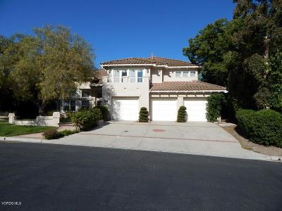 Simi Valley Single Family Home For Sale: 585 Chippendale Avenue