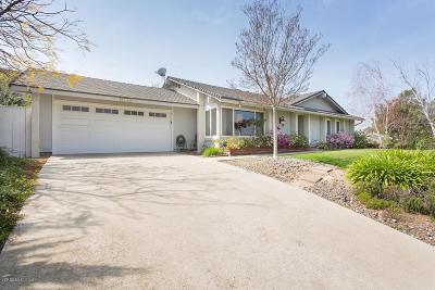 Thousand Oaks Single Family Home For Sale: 2378 Avenida Otono