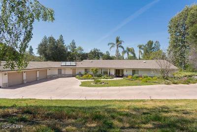 Thousand Oaks Single Family Home For Sale: 389 Sherwood Court