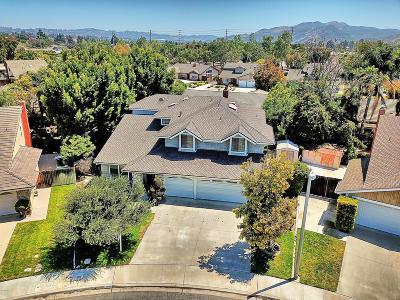 Camarillo Single Family Home For Sale: 140 Appletree Avenue
