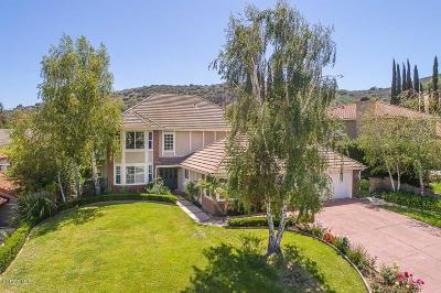 Agoura Hills Single Family Home For Sale: 29632 Kimberly Drive