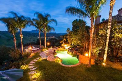 Agoura Hills Single Family Home For Sale: 3800 Davids Road
