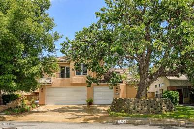 Agoura Hills Single Family Home For Sale: 5666 Silver Valley Avenue