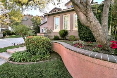 Simi Valley Single Family Home For Sale: 393 Canyon Crest Drive