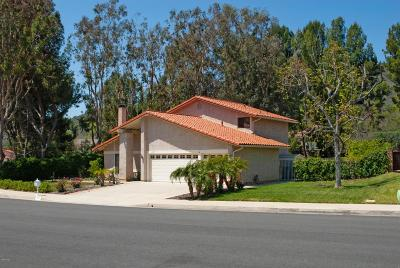 Westlake Village Single Family Home For Sale: 6131 Landino Drive