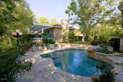 Westlake Village Single Family Home For Sale: 4539 Valley Spring Drive